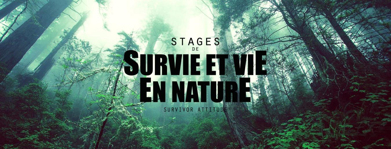 Stages de survie et vie en nature forêt