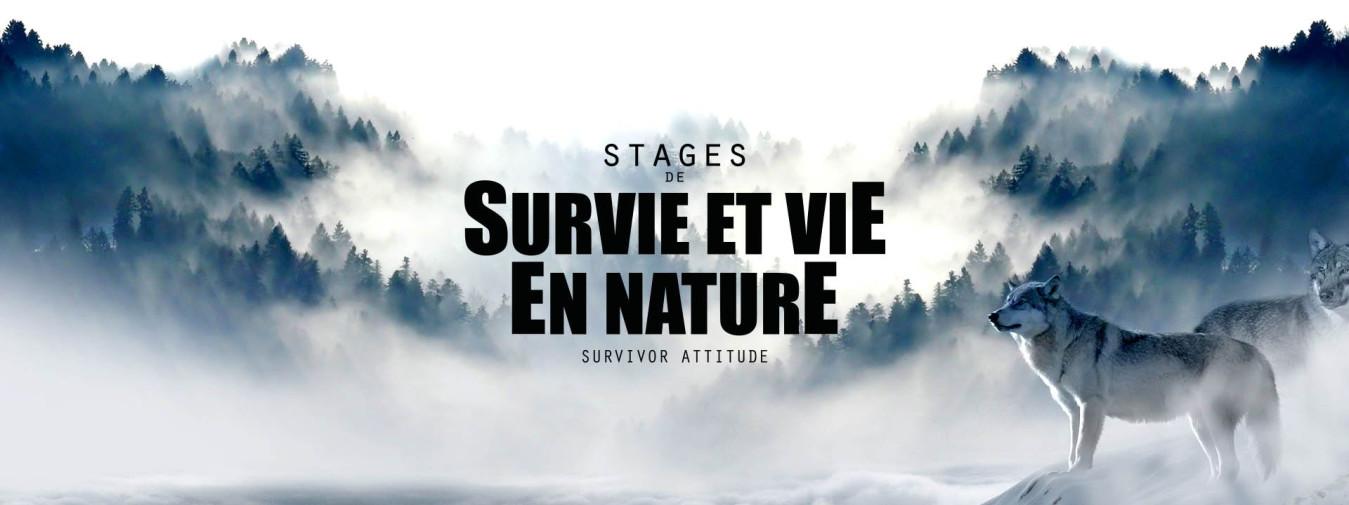 Loup forêt montagne stage de survie