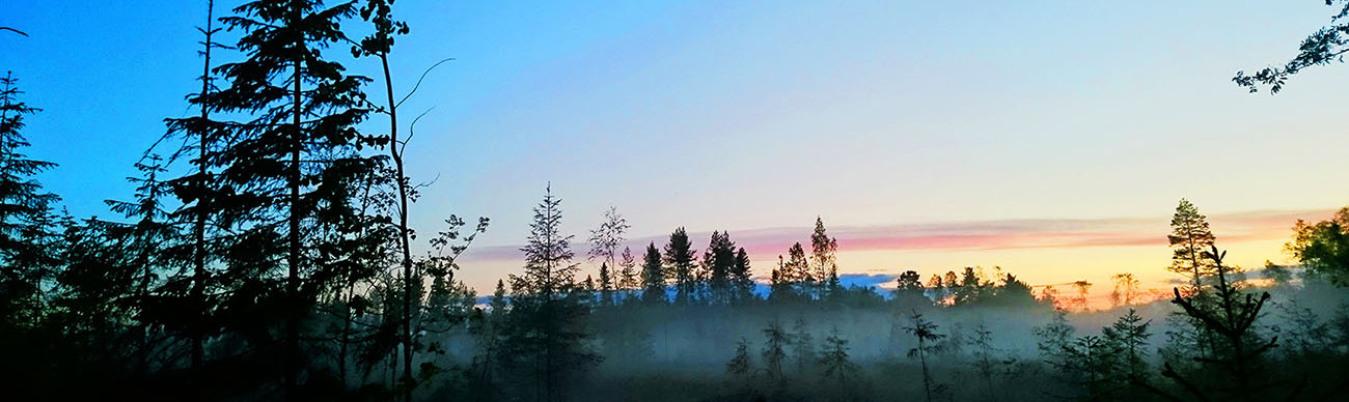 Montagne paysage soleil survie