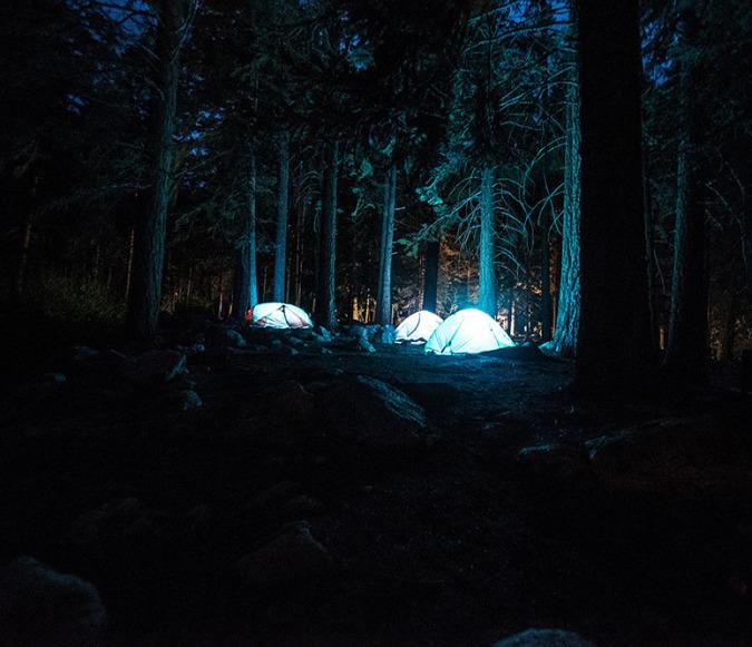 Tente forêt bivouac survie