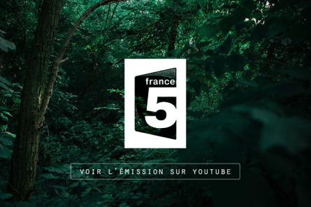 France 5 survie, camouflage, voir l'émission
