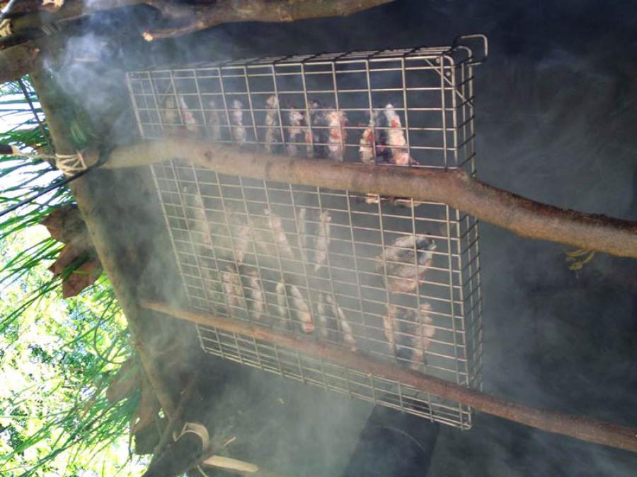 Fumoir bushcraft survie