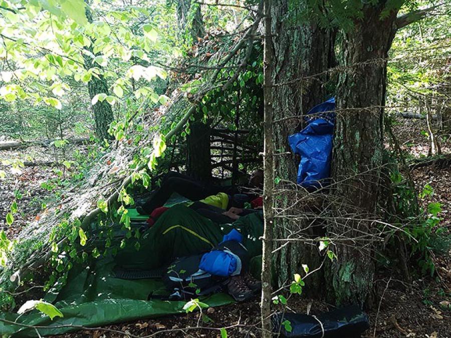 Abris forêt camouflage survie